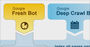 "Google uses 2 distinct ""bots"" to help index the Internet."